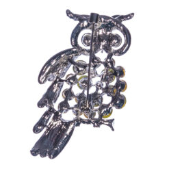 Back View of Owl Shape Silver Brooch with Stone