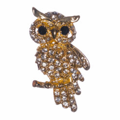 Owl Shape of Silver Brooch with Stone