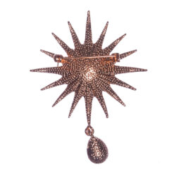 Back View of Star Shape Brooch